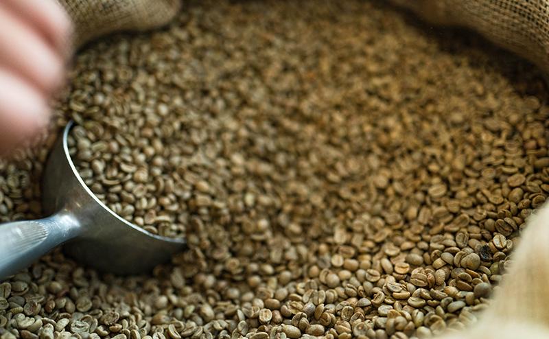 troja skrbna izbira kave